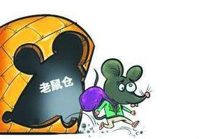 """三九集团""""老鼠仓""""事件"""