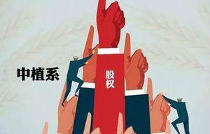 """""""中植系""""缘何踩入地雷阵:从乐视、中弘、ST长生、""""阜兴系""""到2019年债市第一雷"""