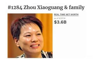 20元本钱到800亿资产,再到200多亿债务危机,谁摧毁了浙江女首富?