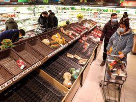 越南等6国禁止粮食出口,联合国发预警:中国要担心吗?