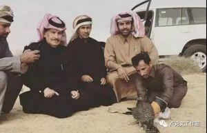 沙特石油战的来龙去脉