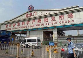 引爆北京新疫情:亚洲最大农贸市场,要不要搬走?
