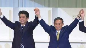 72岁才当上日本新首相:农民出身的菅义伟,会怎么对中国?
