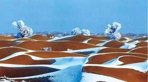新疆沙漠居然下雪了,刚拍的!简直美到爆!一组照片惊艳全国~