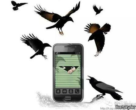 CEO们:提防愤怒的小鸟