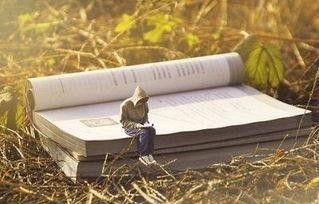 王强:人生最大的捷径,就是读一流的书
