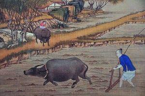 """中国人为何能一""""住""""5000年"""