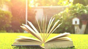Companionship of Books 以书为伴